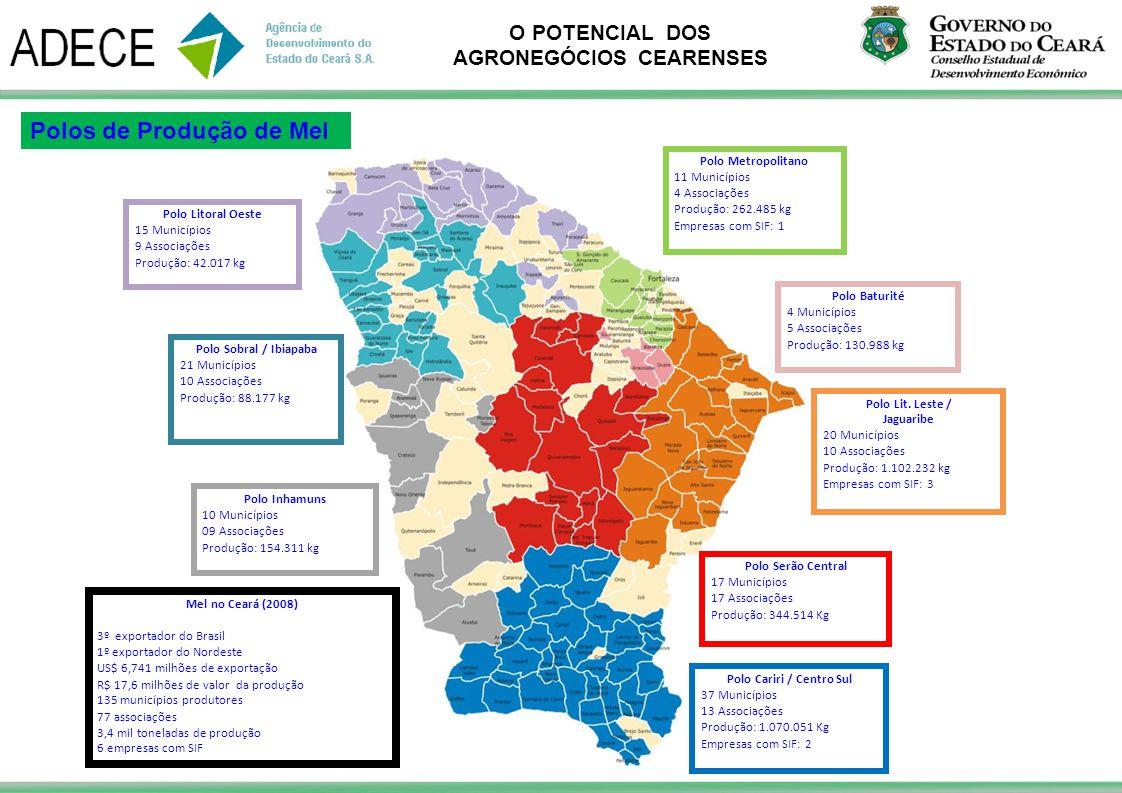 O POTENCIAL DOS AGRONEGÓCIOS CEARENSES Polo Metropolitano 11 Municípios 4 Associações Produção: 262.485 kg Empresas com SIF: 1 Polo Lit. Leste / Jagua