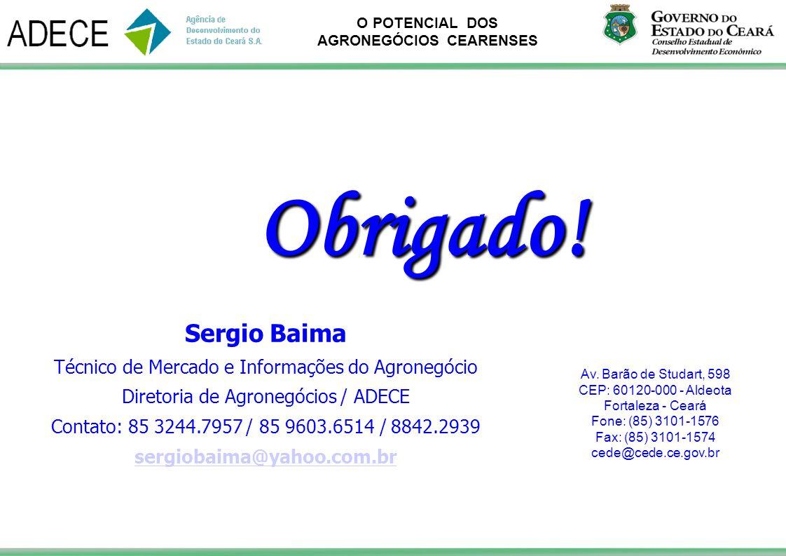 O POTENCIAL DOS AGRONEGÓCIOS CEARENSES Av. Barão de Studart, 598 CEP: 60120-000 - Aldeota Fortaleza - Ceará Fone: (85) 3101-1576 Fax: (85) 3101-1574 c