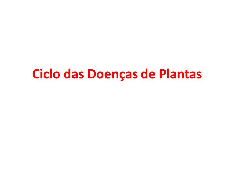 Ciclo das Doenças de Plantas