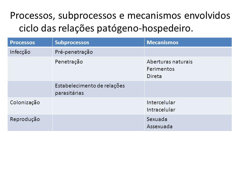 Processos, subprocessos e mecanismos envolvidos ciclo das relações patógeno-hospedeiro. ProcessosSubprocessosMecanismos InfecçãoPré-penetração Penetra