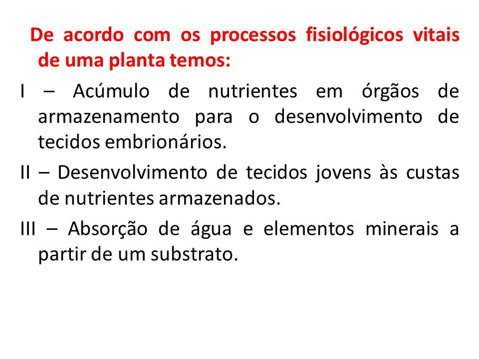 De acordo com os processos fisiológicos vitais de uma planta temos: I – Acúmulo de nutrientes em órgãos de armazenamento para o desenvolvimento de tec