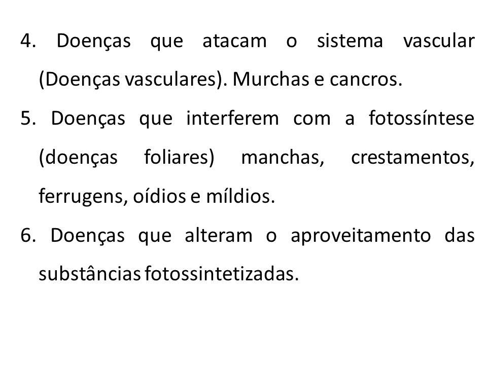 4. Doenças que atacam o sistema vascular (Doenças vasculares). Murchas e cancros. 5. Doenças que interferem com a fotossíntese (doenças foliares) manc