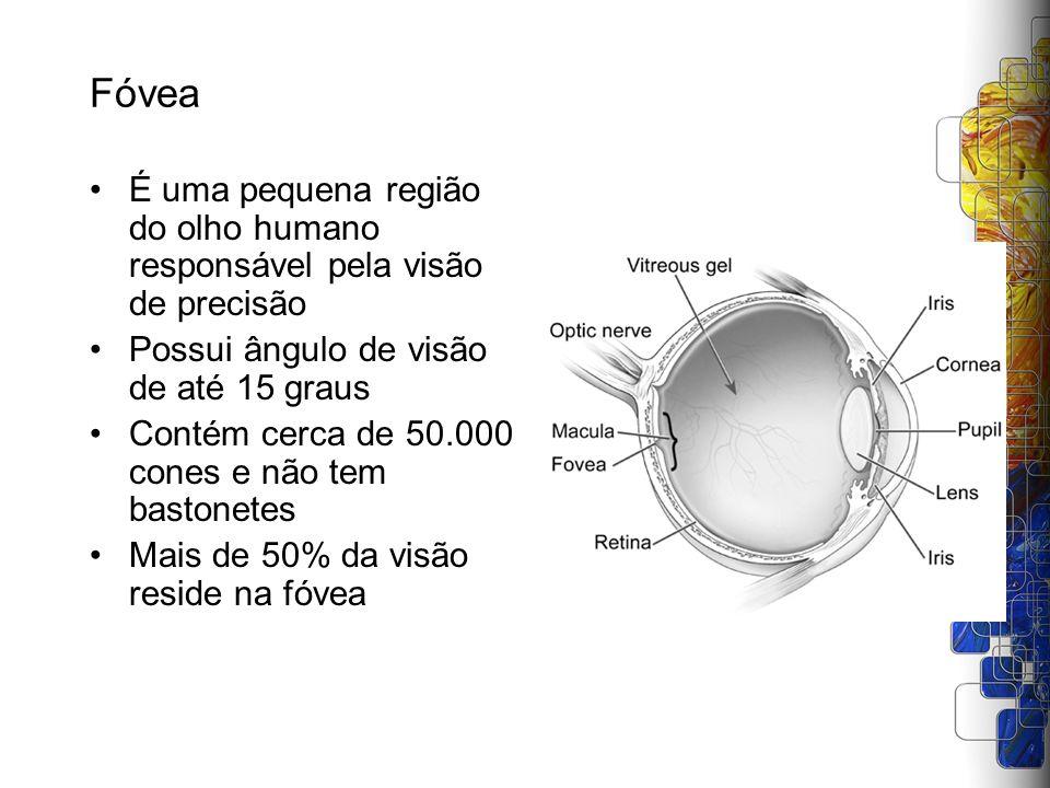Fóvea É uma pequena região do olho humano responsável pela visão de precisão Possui ângulo de visão de até 15 graus Contém cerca de 50.000 cones e não