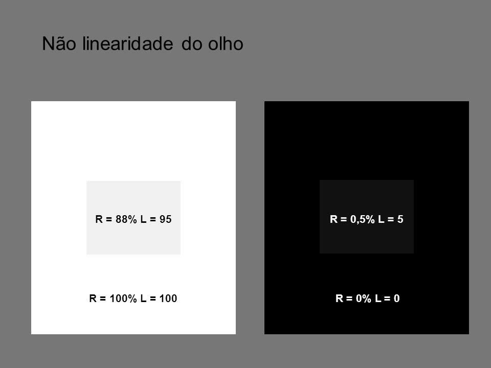 Não linearidade do olho R = 88% L = 95 R = 100% L = 100 R = 0% L = 0 R = 0,5% L = 5