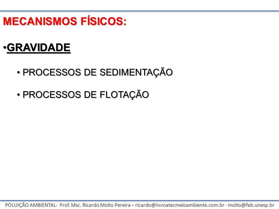 POLUIÇÃO AMBIENTAL- Prof. Msc. Ricardo Molto Pereira – ricardo@invoatecmeioambiente.com.br - molto@feb.unesp.br MECANISMOS FÍSICOS: GRAVIDADEGRAVIDADE
