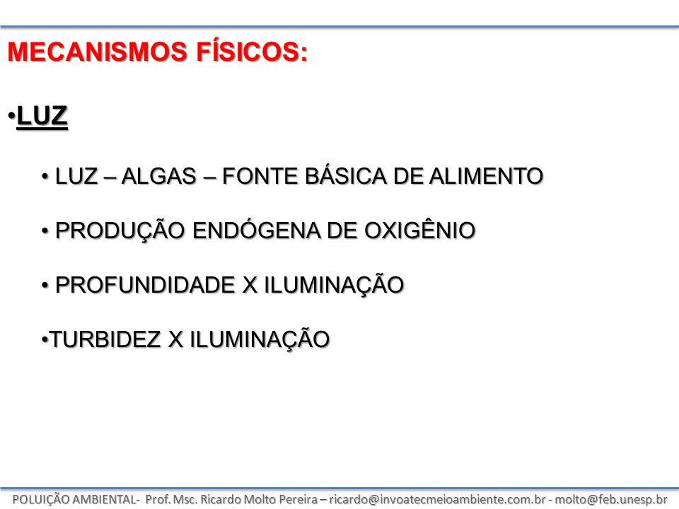 POLUIÇÃO AMBIENTAL- Prof. Msc. Ricardo Molto Pereira – ricardo@invoatecmeioambiente.com.br - molto@feb.unesp.br MECANISMOS FÍSICOS: LUZLUZ LUZ – ALGAS