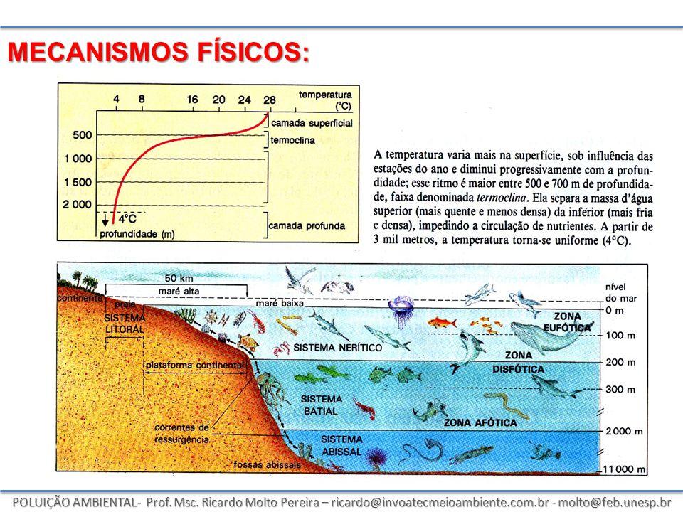 POLUIÇÃO AMBIENTAL- Prof. Msc. Ricardo Molto Pereira – ricardo@invoatecmeioambiente.com.br - molto@feb.unesp.br MECANISMOS FÍSICOS: