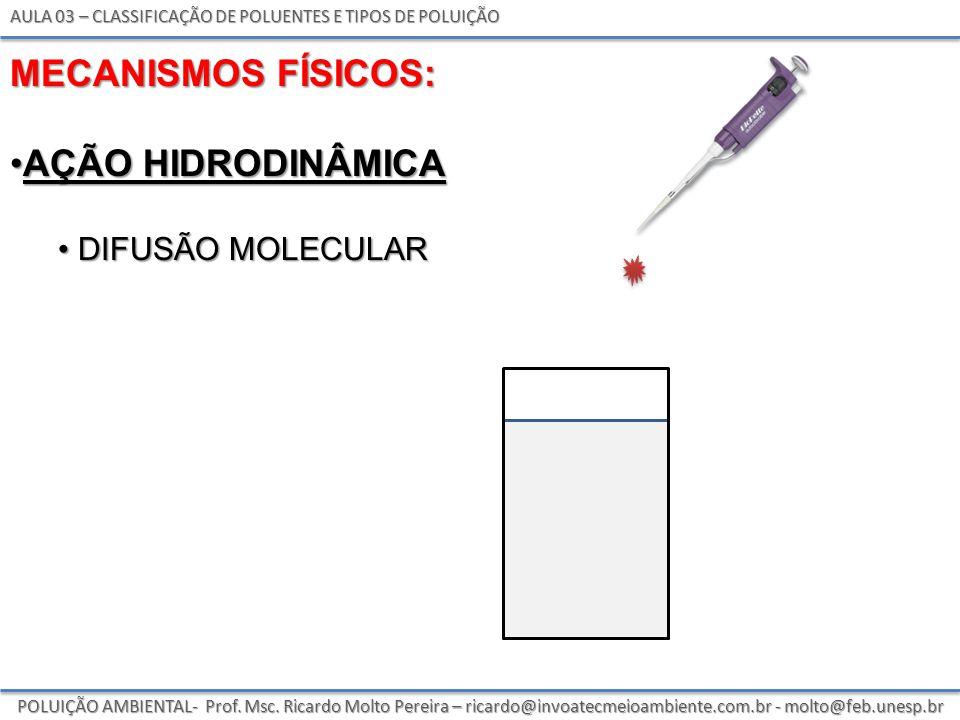 POLUIÇÃO AMBIENTAL- Prof.Msc.