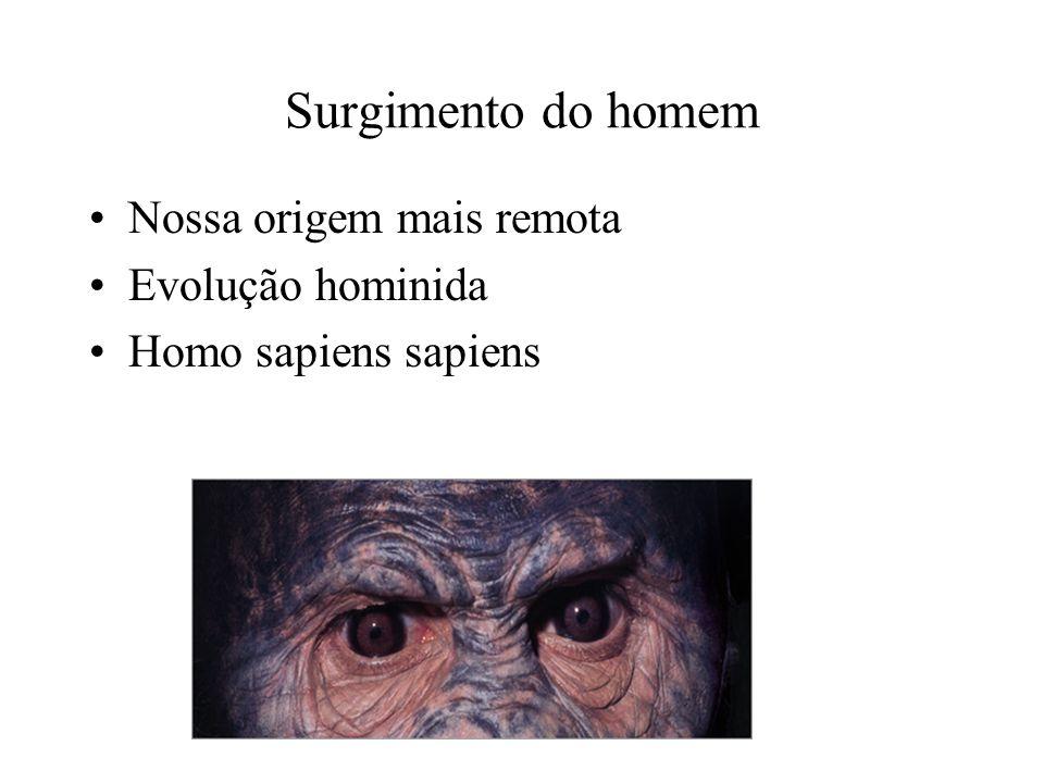 Surgimento do homem Nossa origem mais remota Evolução hominida Homo sapiens sapiens