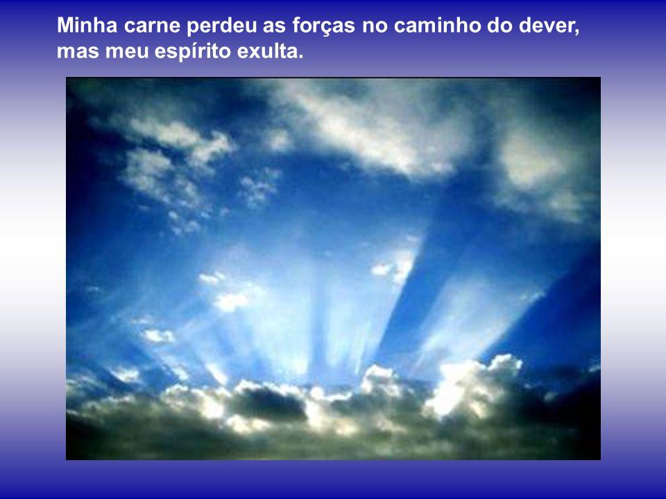 Vinde, achegai-vos a mim, criaturas de Deus, auxiliai-me a cantar, a orar, a amar.