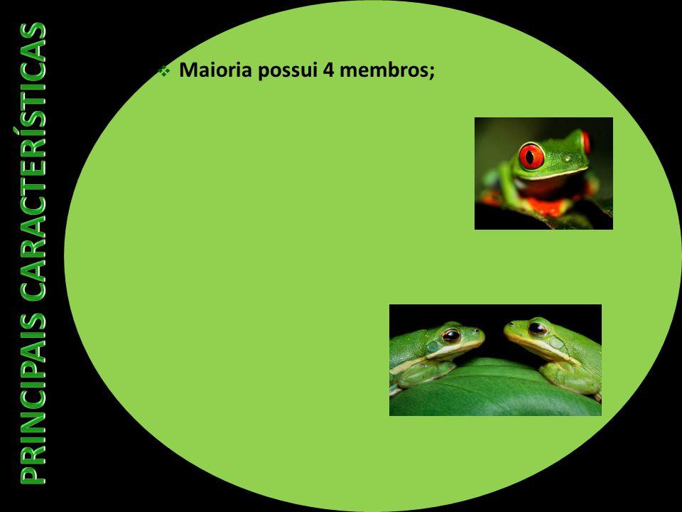 Maioria possui 4 membros;