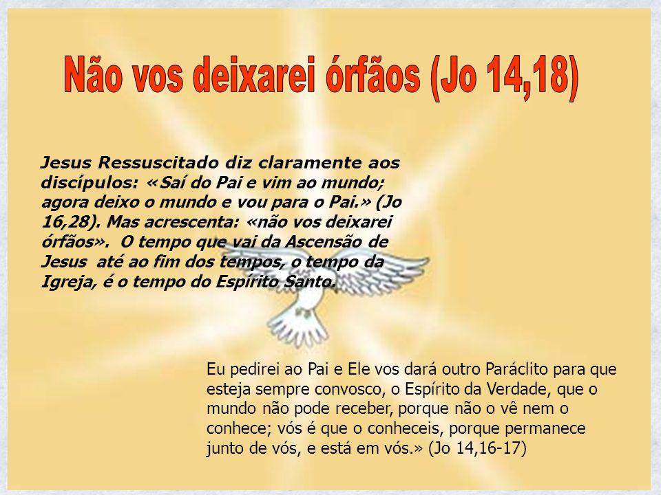 Jesus Ressuscitado diz claramente aos discípulos: « Saí do Pai e vim ao mundo; agora deixo o mundo e vou para o Pai.» (Jo 16,28). Mas acrescenta: «não