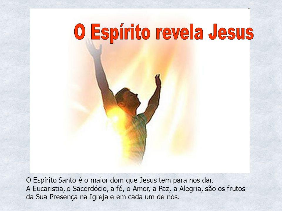 O Espírito Santo é o maior dom que Jesus tem para nos dar. A Eucaristia, o Sacerdócio, a fé, o Amor, a Paz, a Alegria, são os frutos da Sua Presença n