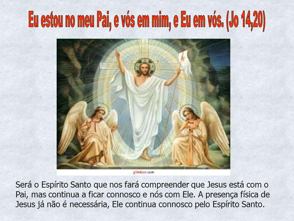 Será o Espírito Santo que nos fará compreender que Jesus está com o Pai, mas continua a ficar connosco e nós com Ele. A presença física de Jesus já nã