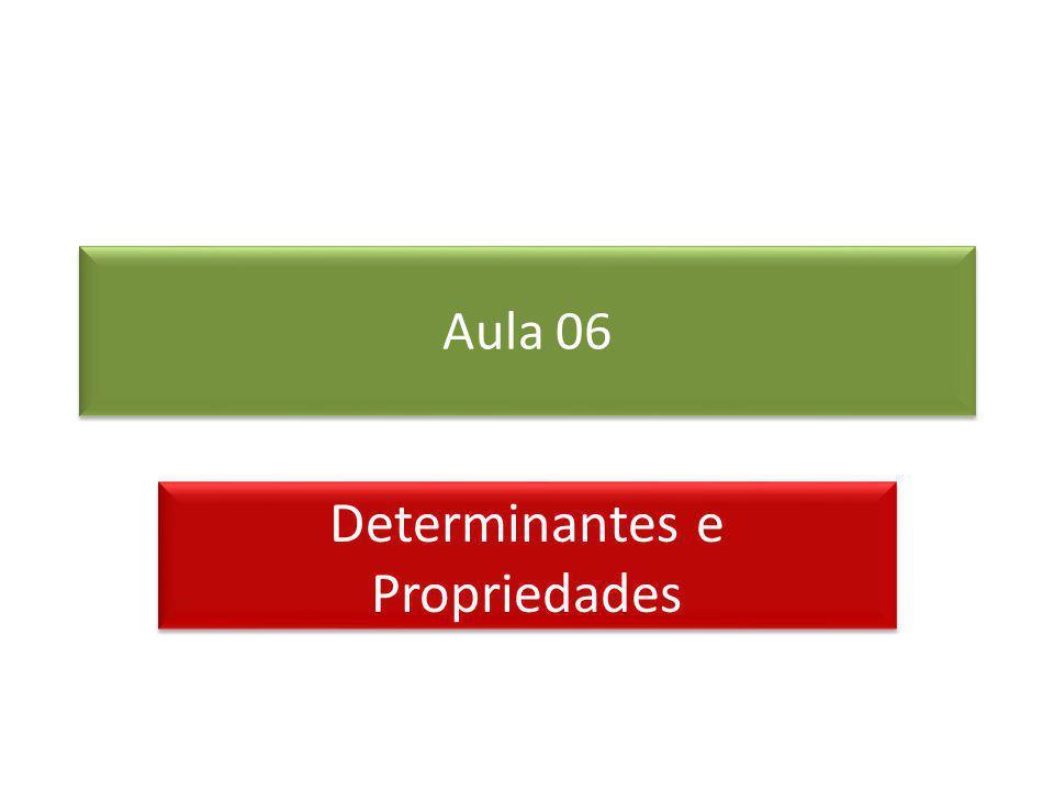 Aula 06 Determinantes e Propriedades