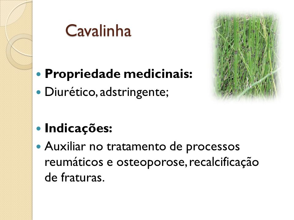 Citronela Propriedades medicinais: Calmante, bactericida, carminativa, repelente de insetos.