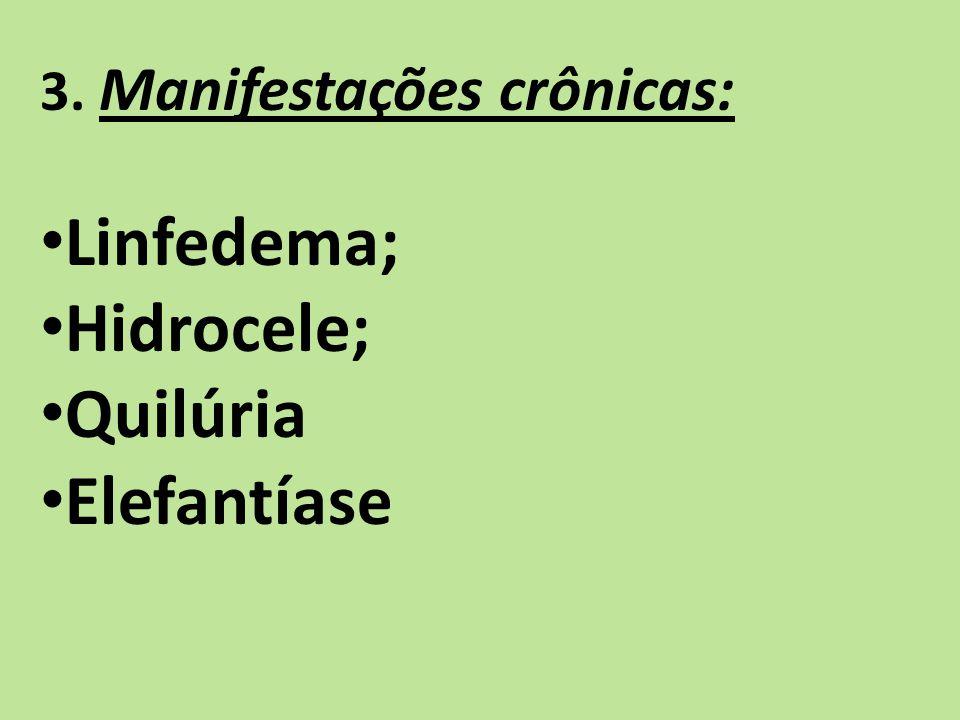 3. Manifestações crônicas: Linfedema; Hidrocele; Quilúria Elefantíase