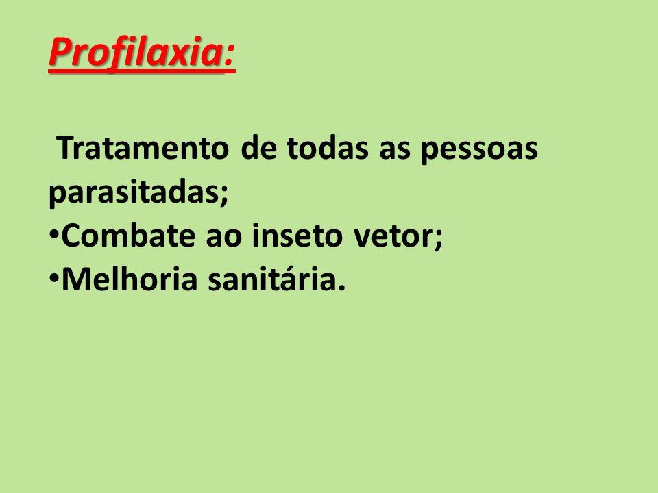 Profilaxia Profilaxia: Tratamento de todas as pessoas parasitadas; Combate ao inseto vetor; Melhoria sanitária.