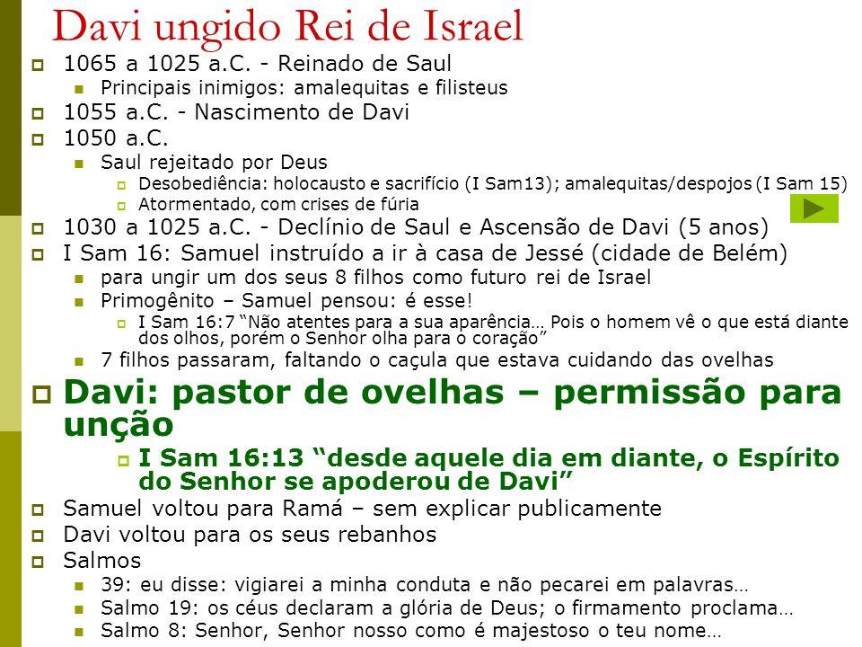 Davi ungido Rei de Israel 1065 a 1025 a.C. - Reinado de Saul Principais inimigos: amalequitas e filisteus 1055 a.C. - Nascimento de Davi 1050 a.C. Sau