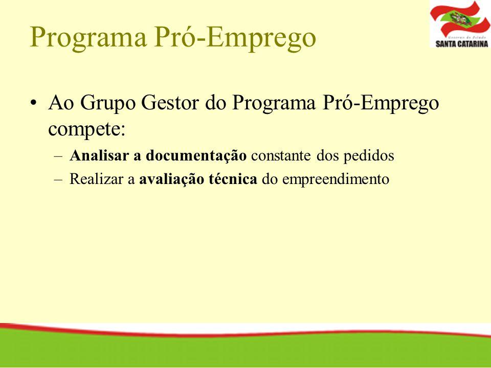 Programa Pró-Emprego Ao Grupo Gestor do Programa Pró-Emprego compete: –Analisar a documentação constante dos pedidos –Realizar a avaliação técnica do