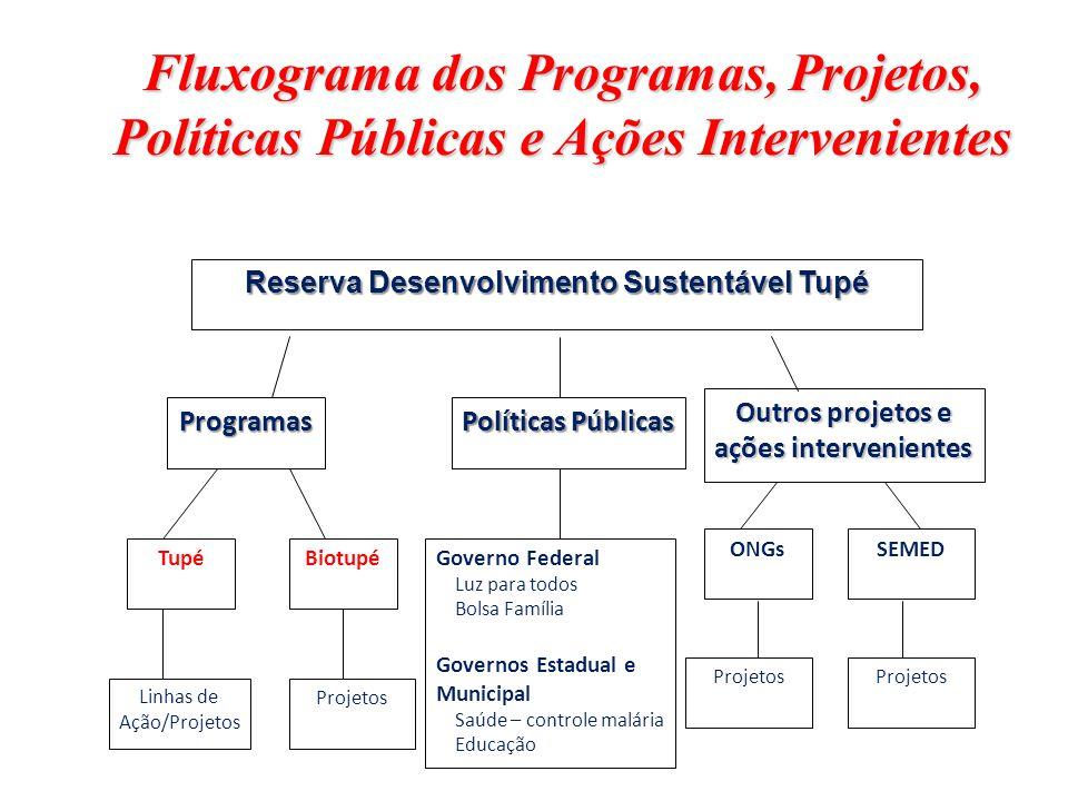 Reserva Desenvolvimento Sustentável Tupé Tupé Programas Políticas Públicas Biotupé Outros projetos e ações intervenientes ONGsSEMED ProjetosLinhas de