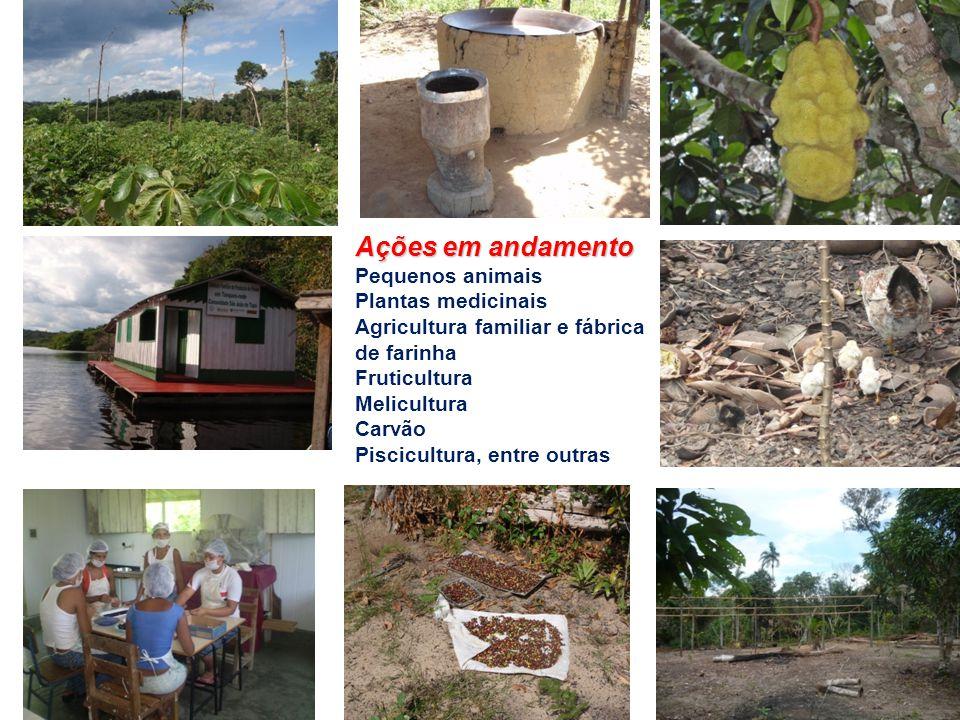 Ações em andamento Pequenos animais Plantas medicinais Agricultura familiar e fábrica de farinha Fruticultura Melicultura Carvão Piscicultura, entre o