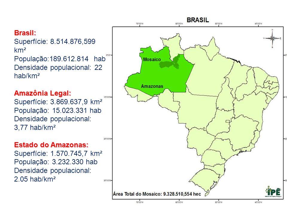 Brasil: Superfície: 8.514.876,599 km² População:189.612.814 hab Densidade populacional: 22 hab/km² Amazônia Legal: Superfície: 3.869.637,9 km² Populaç