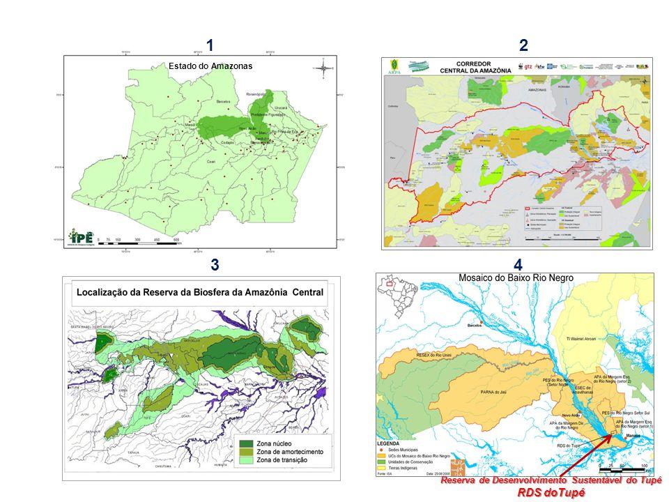 Corredor Central da Amazônia 245.500 km2 (2002) Reserva da Biosfera da Amazônia Central - 208.600 km2 (2001) Mosaico de Áreas Protegidas do Baixo Rio Negro – (2006/07) UC RDS do Tupé (2005) Articulação entre os Territórios UC