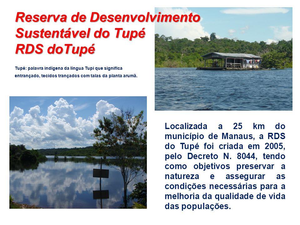 Tupé: palavra indígena da língua Tupi que significa entrançado, tecidos trançados com talas da planta arumã. Localizada a 25 km do município de Manaus