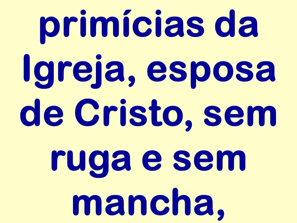 primícias da Igreja, esposa de Cristo, sem ruga e sem mancha,