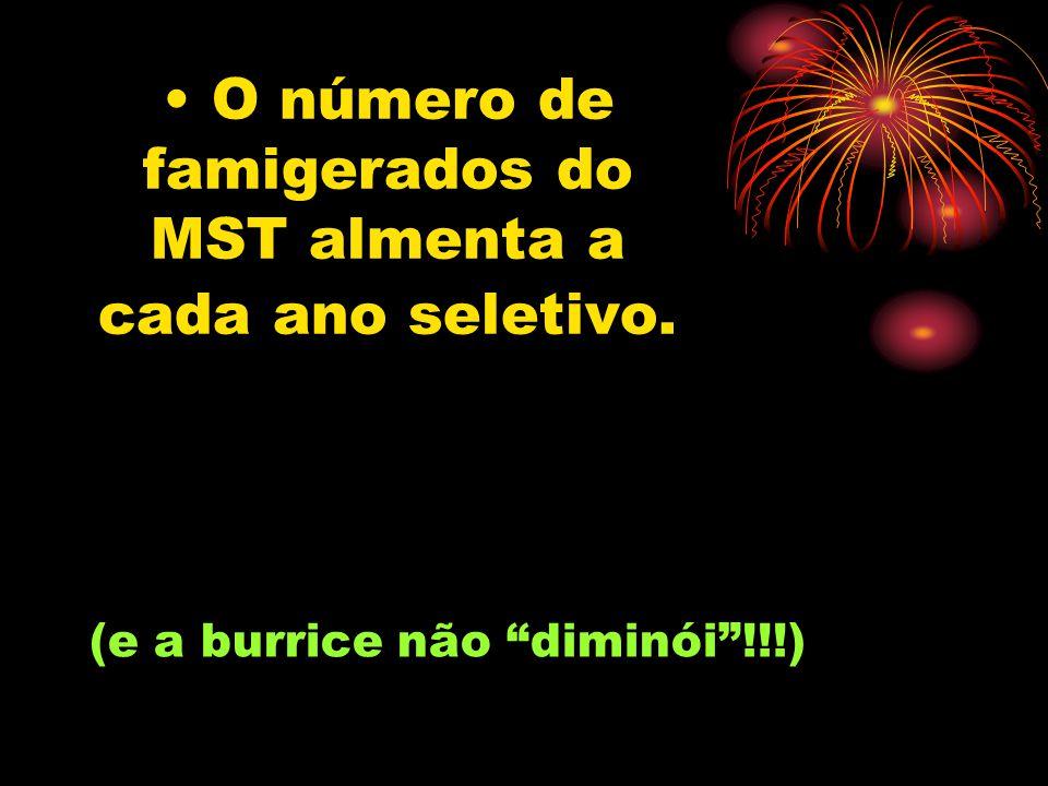 O número de famigerados do MST almenta a cada ano seletivo. (e a burrice não diminói!!!)