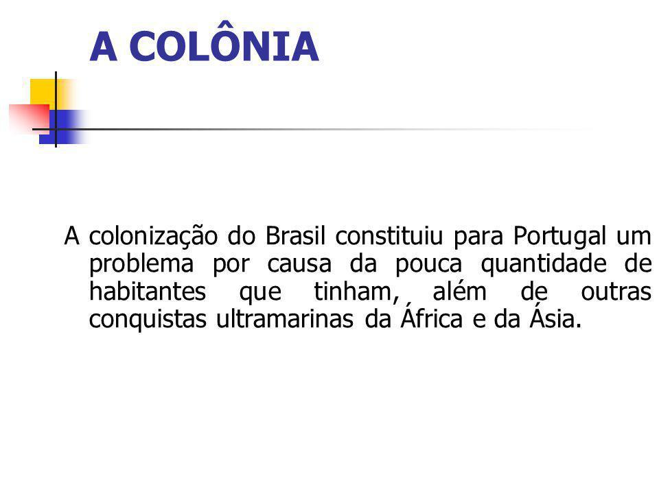 A colonização do Brasil constituiu para Portugal um problema por causa da pouca quantidade de habitantes que tinham, além de outras conquistas ultramarinas da África e da Ásia.
