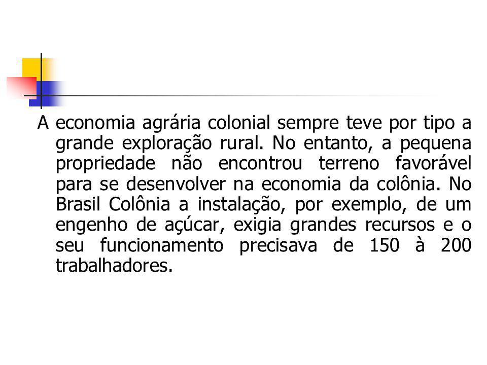 A economia agrária colonial sempre teve por tipo a grande exploração rural. No entanto, a pequena propriedade não encontrou terreno favorável para se