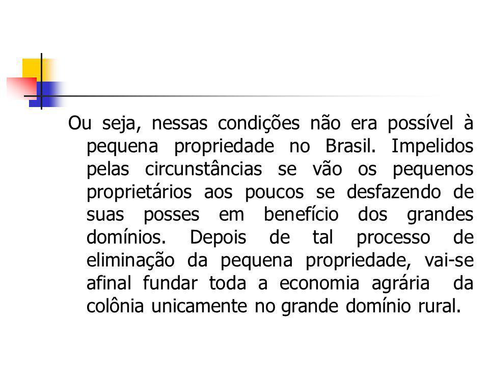 Ou seja, nessas condições não era possível à pequena propriedade no Brasil. Impelidos pelas circunstâncias se vão os pequenos proprietários aos poucos