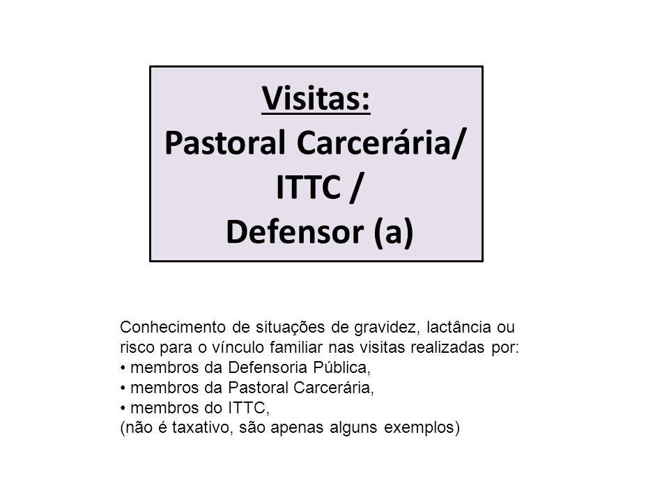 Conhecimento de situações de gravidez, lactância ou risco para o vínculo familiar nas visitas realizadas por: membros da Defensoria Pública, membros da Pastoral Carcerária, membros do ITTC, (não é taxativo, são apenas alguns exemplos) Visitas: Pastoral Carcerária/ ITTC / Defensor (a)