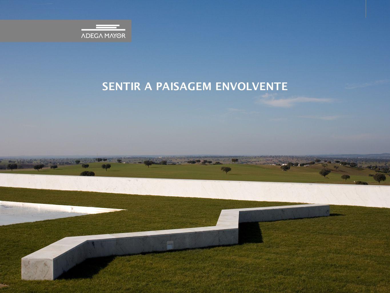 20 Vídeo de boas vindas no auditório legendado Flyer bilingue em Português e Inglês, e no site acrescenta o Espanhol.