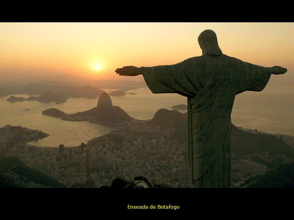 RIO DESDE EL CIELO Restinga da Marambaia