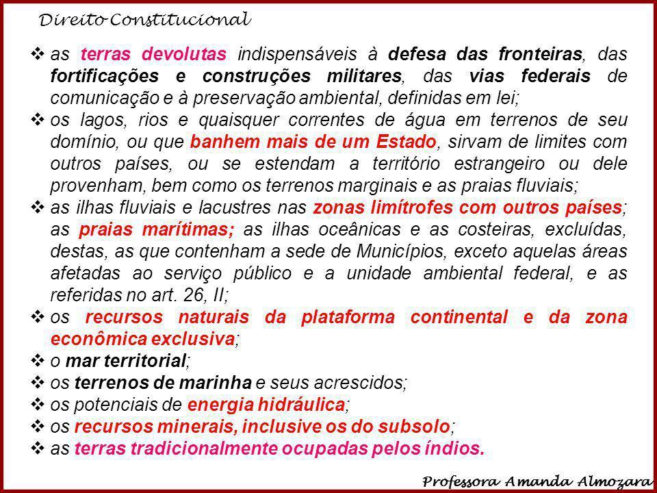 Direito Constitucional Professora Amanda Almozara 8 as terras devolutas indispensáveis à defesa das fronteiras, das fortificações e construções milita