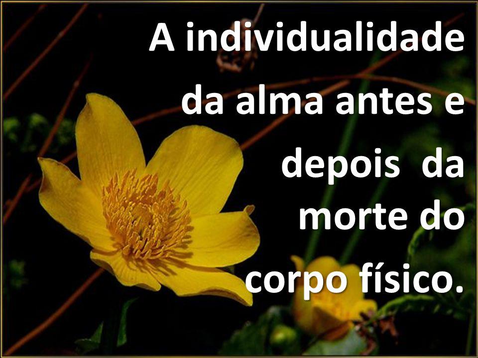 A individualidade A individualidade da alma antes e da alma antes e depois da morte do depois da morte do corpo físico. corpo físico.