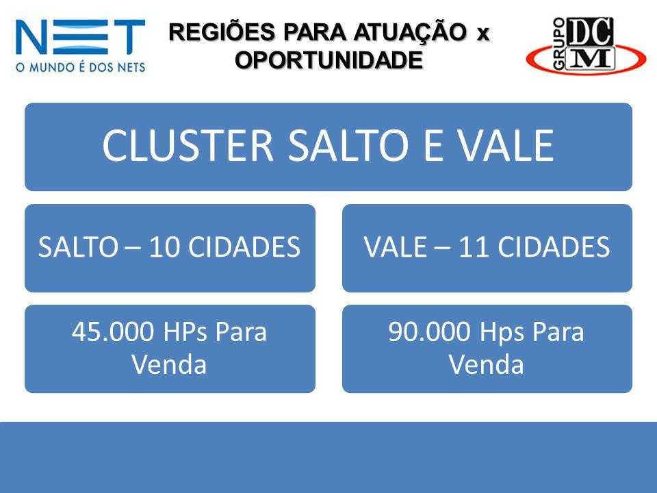 REGIÕES PARA ATUAÇÃO x OPORTUNIDADE CLUSTER SALTO E VALE SALTO – 10 CIDADES 45.000 HPs Para Venda VALE – 11 CIDADES 90.000 Hps Para Venda