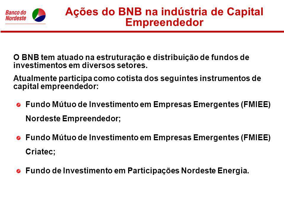 Ações do BNB na indústria de Capital Empreendedor Fundo Mútuo de Investimento em Empresas Emergentes (FMIEE) Nordeste Empreendedor; Fundo Mútuo de Investimento em Empresas Emergentes (FMIEE) Criatec; Fundo de Investimento em Participações Nordeste Energia.