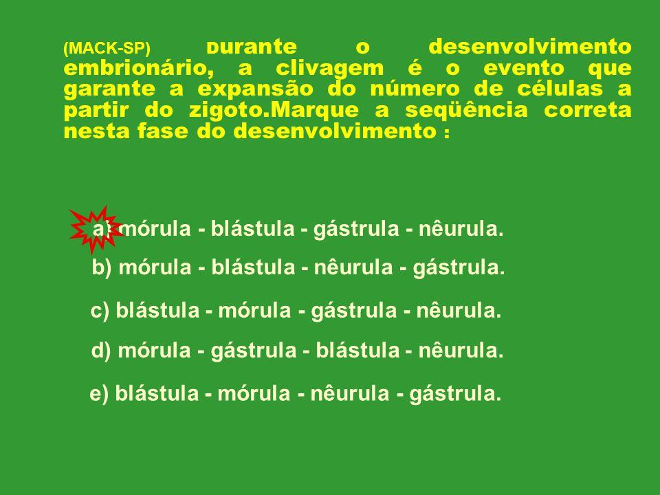 LOCAL DE PRODUÇÃO DOS ESPERMATOZÓIDES: TÚBULOS SEMINÍFEROS LOCAL DE PRODUÇÃO DA TESTOSTERONA: CÉLULAS INTERSTICIAIS DE LEYDIG HORMÔNIO GONADOTRÓFICO QUE ESTIMULA A ESPERMATOGÊNESE: FSH OU HORMÔNIO FOLÍCULO ESTIMULANTE HORMÔNIO GONADOTRÓFICO QUE ESTIMULA A PRODUÇÃO DE TESTOSTERONA: LH OU HORMÔNIO LUTEINIZANTE
