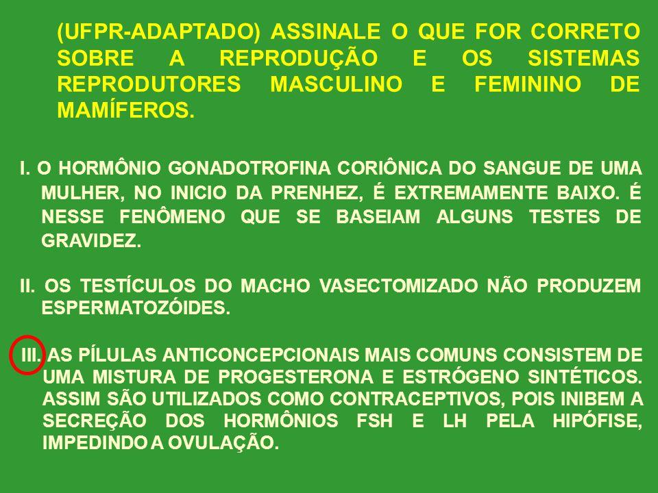 (UFPR-ADAPTADO) ASSINALE O QUE FOR CORRETO SOBRE A REPRODUÇÃO E OS SISTEMAS REPRODUTORES MASCULINO E FEMININO DE MAMÍFEROS. I. TESTOSTERONA, O HORMÔNI