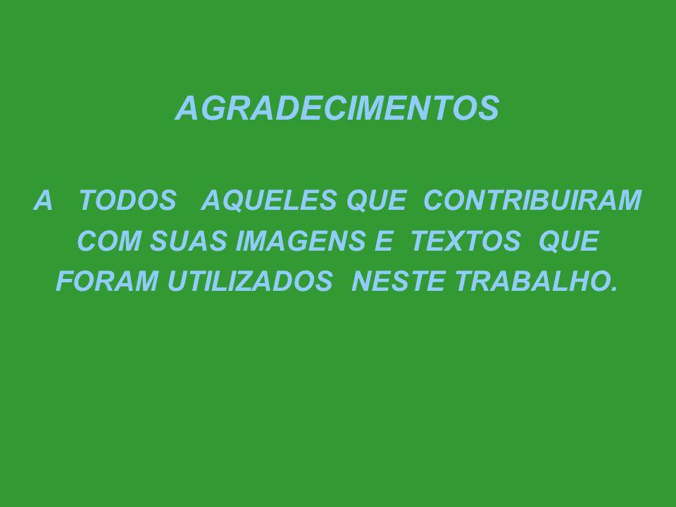 U F B A PROF. M.S HÉLIO G. SOUZA e-mail:vethelio@ufba.br