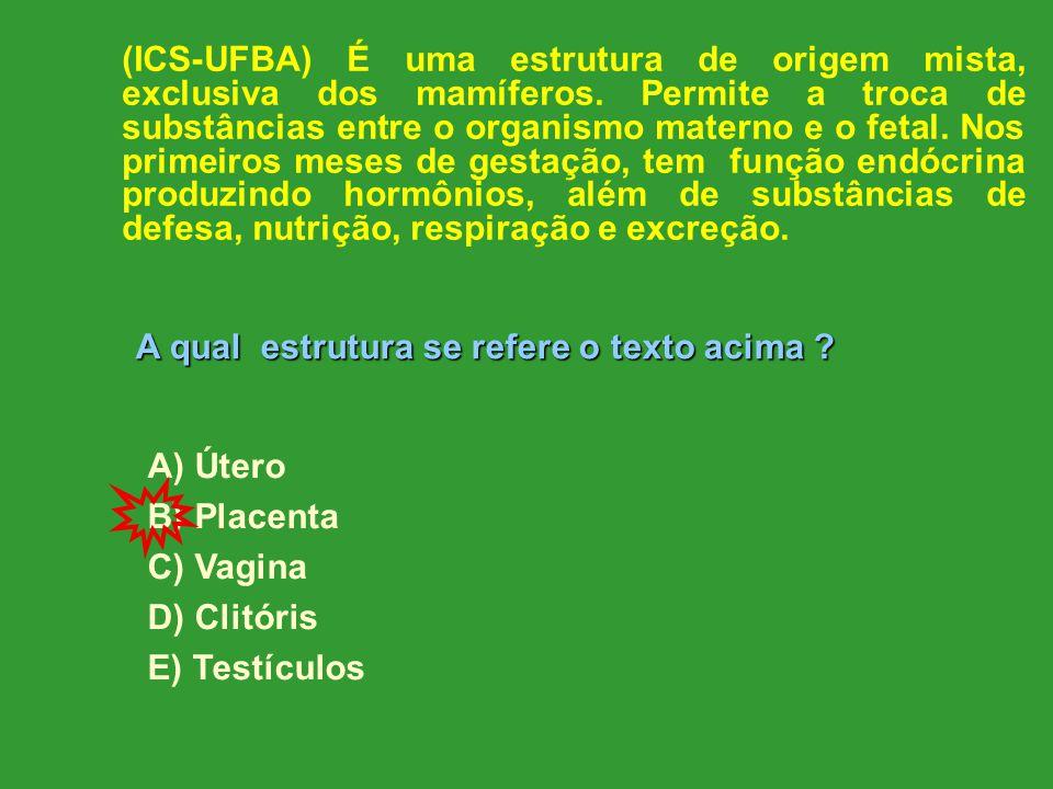 (ICS-UFBA) É uma estrutura de origem mista, exclusiva dos mamíferos.