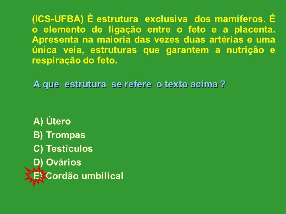 (ICS-UFBA) È estrutura exclusiva dos mamíferos.É o elemento de ligação entre o feto e a placenta.