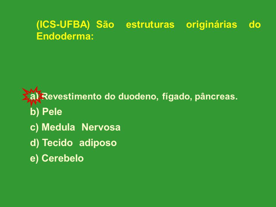 (ICS-UFBA) São estruturas originárias do Endoderma: a) Revestimento do duodeno, fígado, pâncreas.