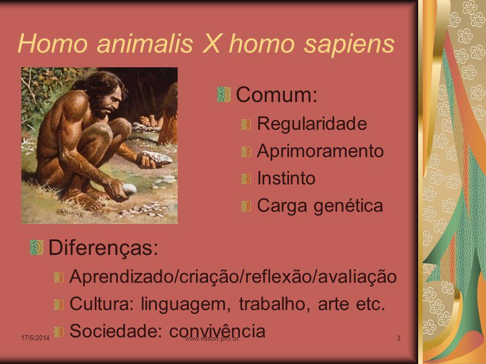 Homo animalis X homo sapiens Comum: Regularidade Aprimoramento Instinto Carga genética Diferenças: Aprendizado/criação/reflexão/avaliação Cultura: lin