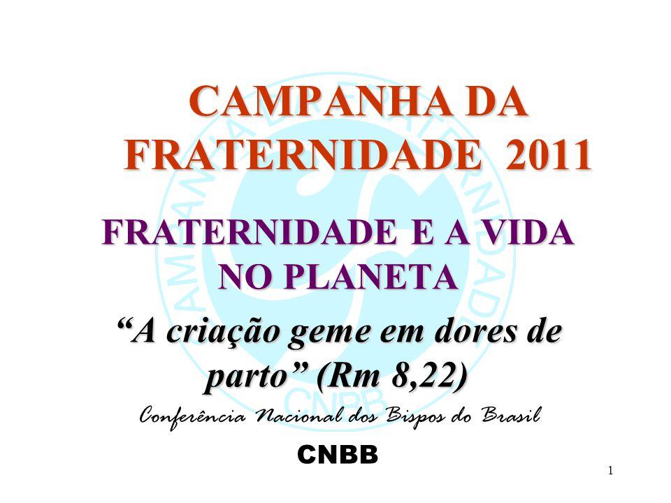 1 CAMPANHA DA FRATERNIDADE 2011 FRATERNIDADE E A VIDA NO PLANETA A criação geme em dores de parto (Rm 8,22) Conferência Nacional dos Bispos do Brasil