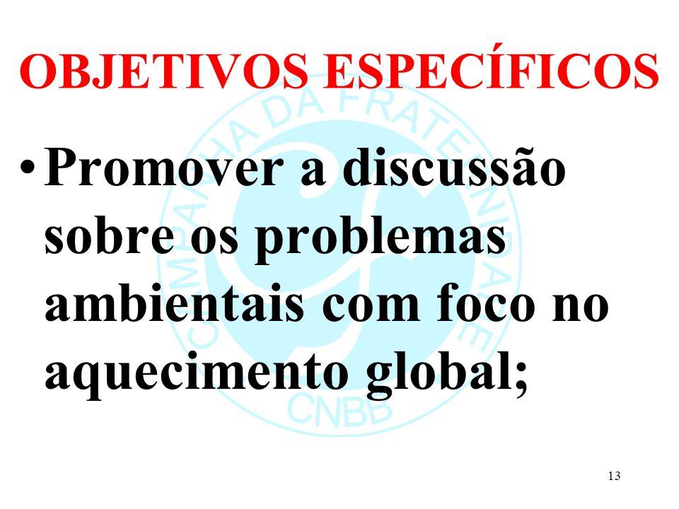 OBJETIVOS ESPECÍFICOS Promover a discussão sobre os problemas ambientais com foco no aquecimento global; 13